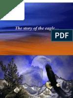 Rebirthofthe Eagle Managing change[1]