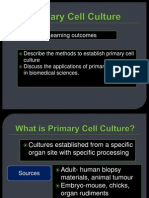 Primary Cell Culture 2013 020914