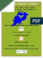 DPR-Odisha