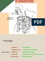 2b Aparato gastrointestinal.ppt