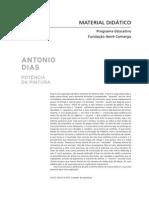 Material Didático Antonio Dias