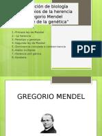 Topico IV II Herencia 01