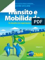 12 Transito e Mobilidade