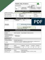 Perfil de Un Auditor Contable Protisa