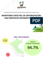 MONITOREO SATELITAL DE LA DEFORESTACION - PERU