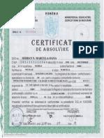 Certificat Absolvire Curs PC