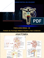 Renal 2 Fisiologia