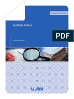 Aud_Pub_livro_D_WEB (1).pdf