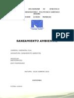 Saneamiento Ambiental Trabajo Investigacion IUPSM