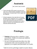 Anatomia - Fisiología