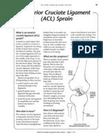51 55 Acl Sprain