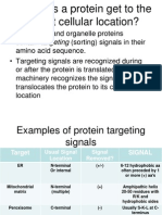 How Do Proteins Get to Their Correct Cellular Locations