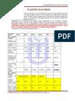 209920904-Flujo-Caja-Anual.doc