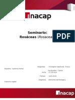 Rosaceas