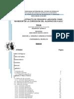 TESIS_ANA KAREN.docx