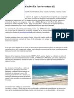 Article   Alquiler De Coches En Fuerteventura (2)