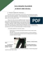 Proiectarea sistemelor de productie.docx