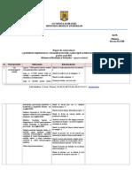 2012 11 Raport Activitate 2011