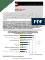 ESG-Exablox Reimagines File Storage.pdf