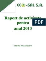 raport_ecosal_2013.pdf