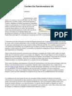 Article   Alquiler De Coches En Fuerteventura (6)
