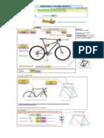 Biomecanica MTB v.13 y Desarrollos