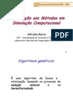 Introdução Aos Métodos Em Simulação Computacional Genética