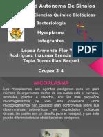 Micoplasma Spp