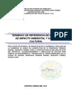 Informe Ambiental El Roble