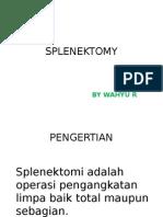 Pp Splenektomy