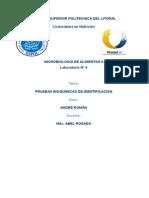 Pruebas Bioquímicas (Microbiología de los Alimentos)