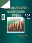 Manejo Nacimiento Matadero