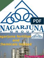 Presentation on Nagarjuna Fertilizers