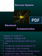 biology chapter 35-2 and 35-3 divisions of the nervous system