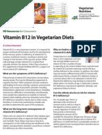 B12 Vegetarian Nutrition