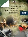 Homeless Survey Report