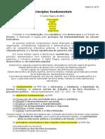 1 - Princípios Fundamentais + Garantias Fundamentais.docx