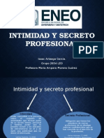 Intimidad y Secreto Profesional