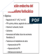 Tema 85. Metabolismo Fosfocálcico.