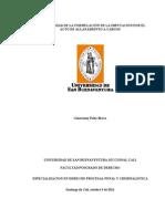 Formulación_Acto_Cargos_Palta_2011.pdf