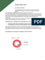 13.Farmacologia Oxidului Nitric