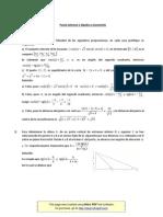 _pauta_ S1 Alg y Geom 2-2013 _1