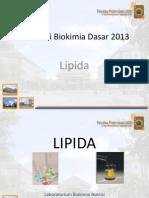 Lipida & urin kuanti biodas 2013.pdf