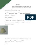 El Gradiente de Una Función de 2 Variables