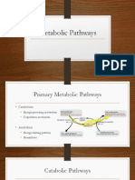 Microbial Metabolic Pathways