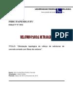 Relatório Parcial -Otimização topológica do reforço de estruturas de concreto armado com fibras de carbono
