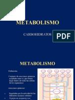 Metabolismo d Carboidratosppt