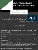 Aula 1 - Organizações, Cognição e Motivação.pdf