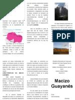 MACIZO GUAYANÉS.docx