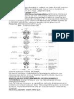Mastocitos y Basófilos